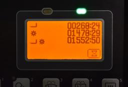 32460